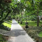 Padma Gardens