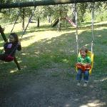 Children on the swings