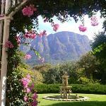 Stunning view & Garden