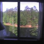 View from our room, looking towards pond