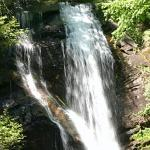 Don't miss Anna Ruby Falls. It's gorgeous!