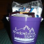Bucket of S'mores fixins that came with our package