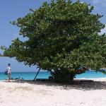 Fryes Beach