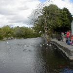river at Cong