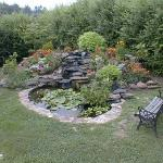 water feature in the back yard
