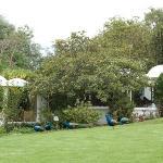 La Mirage - gardens with peacocks