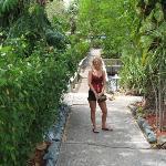 on walk way