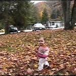 Macy in the leaves
