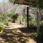 Den Paradera Herb Garden