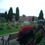 from the roses to the palatine hill