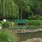Monet's Gardens were picture perfect!