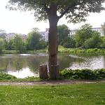 The parc near by the pension