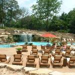 New Oasis Pool