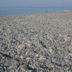 les galets qui composent la plage