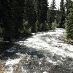 Creek by hotel