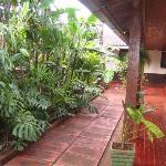 jardin entre habitaciones