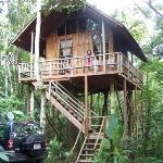 Our treehouse in the jungle!!
