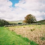 Site of former chapel - Hermitage Castle - May 22, 2005
