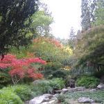 Japanese garden lithia park