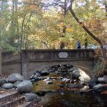Lithia Park - Ashland Creek