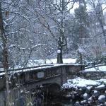 winter river Lithia Park