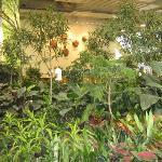 Photo de Devonian Gardens