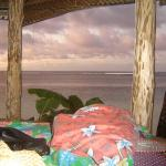 a look from the fale i stayed in!