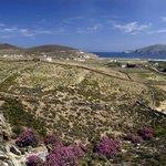 Ftelia, Panormos Bay