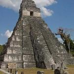 Daily trips to Tikal from Crystal Paradise