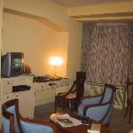 Dvorak Suite living room