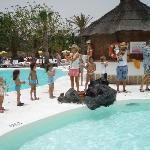 animacion en la piscina