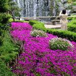 Hotel New Otani Garden D
