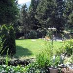 Harrison Heritage - back garden