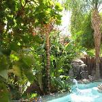 The pool, waterfall, and lush landscaping