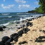 Hideaways Beach Below Pali Ke Kua