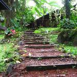 steps from hot tub to main house