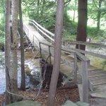 Crazy Bridge on trail behind resort