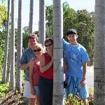 Arrival at Plantation Resort