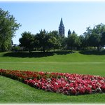 Parliament Hill with flowers in the park