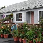 Cute Little Cottages at Weiss Paradise Suites