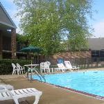pool area was lush