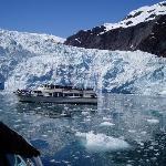 Close shot, Holgate Glacier