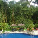 Photo de Arasha Tropical Rainforest Resort & Spa