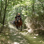 horsriding in the Tuscan countryside!