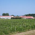 The CGT winery (from the road)