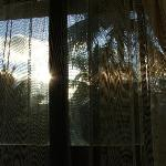 view waking up in the coco palm