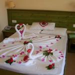 Simba Hotel