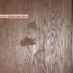 Holes In Bathroom Door