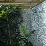 A very large, two person, open-air (screened top), lava rock shower with tropical plants