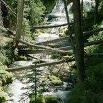 Boundary Springs hike